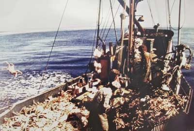 King Crab Fishing on the St. Mary II, late 1970s